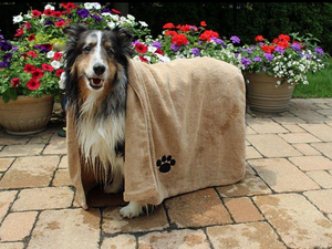 Bone Dry - Cozy Pet Towel