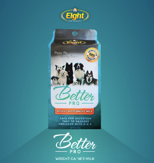 BetterPro Weight Gainer Milk for Dogs