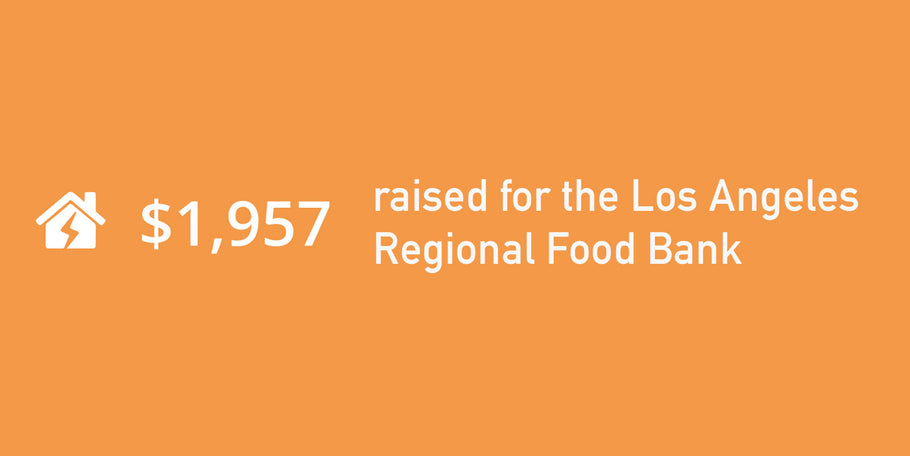 Fundraising Report for the LA Regional Food Bank
