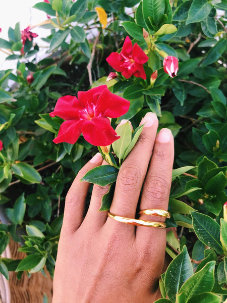 Image of a hand wearing a gold ring across two fingers, against a green bush with pink flowers.