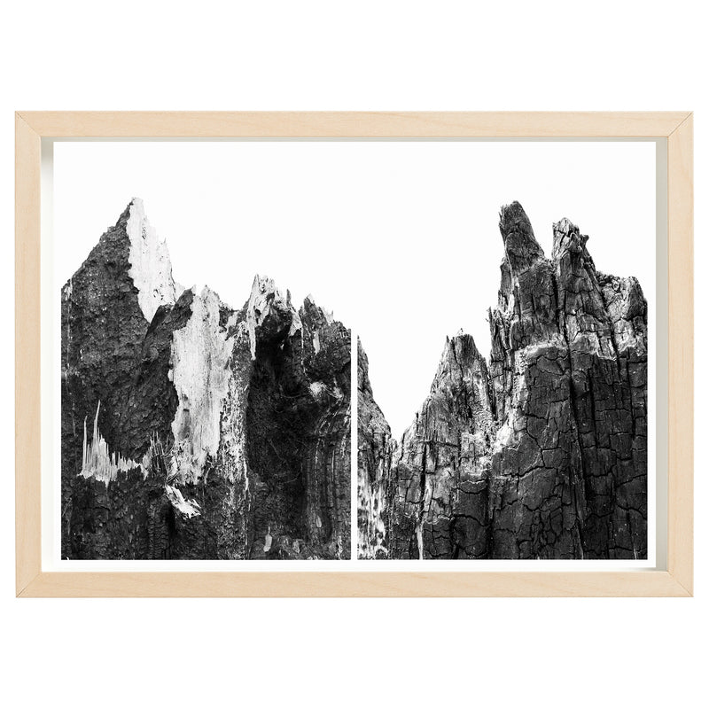 BUSHFIRE RELIEF ART PRINT SERIES - KENTON VALLEY STUMP, FIRES 2015 - 2019 *FINE ART PRINT*