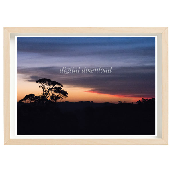 BUSHFIRE RELIEF ART PRINT SERIES - CUDLEE CREEK FIREGROUND DAY 3 SUNSET, KENTON VALLEY 2019 *DIGITAL DOWNLOAD*