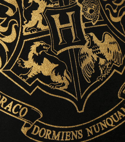 Hogwarts Gold Crest Hooded Jumper