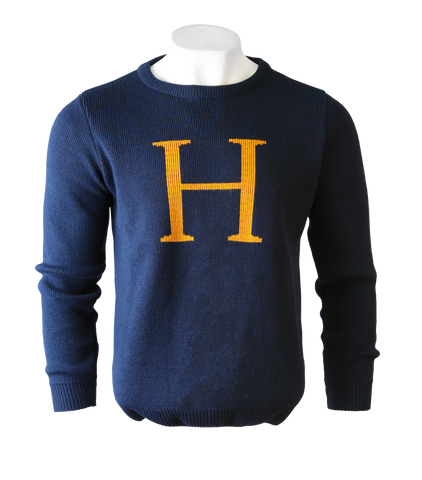Harry Potter 'H' Jumper