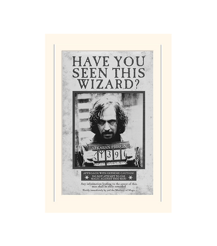 picture relating to Have You Seen This Wizard Printable named Sirius Black \
