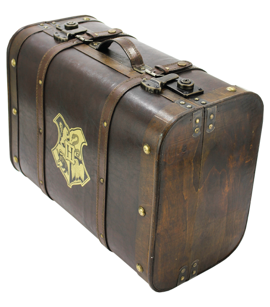 Harry Potter Trunk Bag