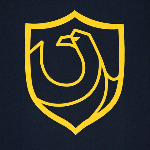 Ravenclaw House Crest Youth Navy T-Shirt