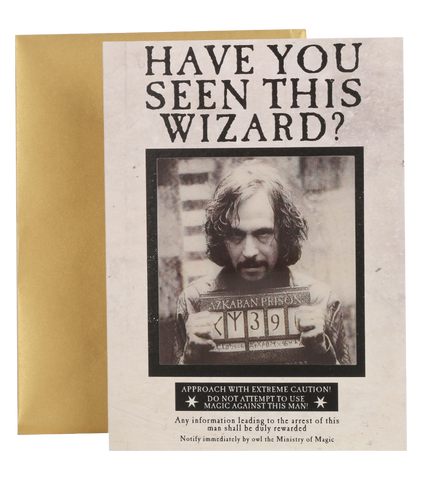 Have You Seen This Wizard? Lenticular Notecard