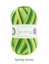 Load image into Gallery viewer, Sock yarn - WYS Signature 4ply Seasons 100g