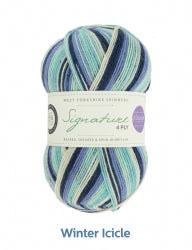 Sock yarn - WYS Signature 4ply Seasons 100g