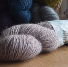 Load image into Gallery viewer, Knit One kits finger less mitts knitting kits Erika Knight Wild Wool colour Dawdle