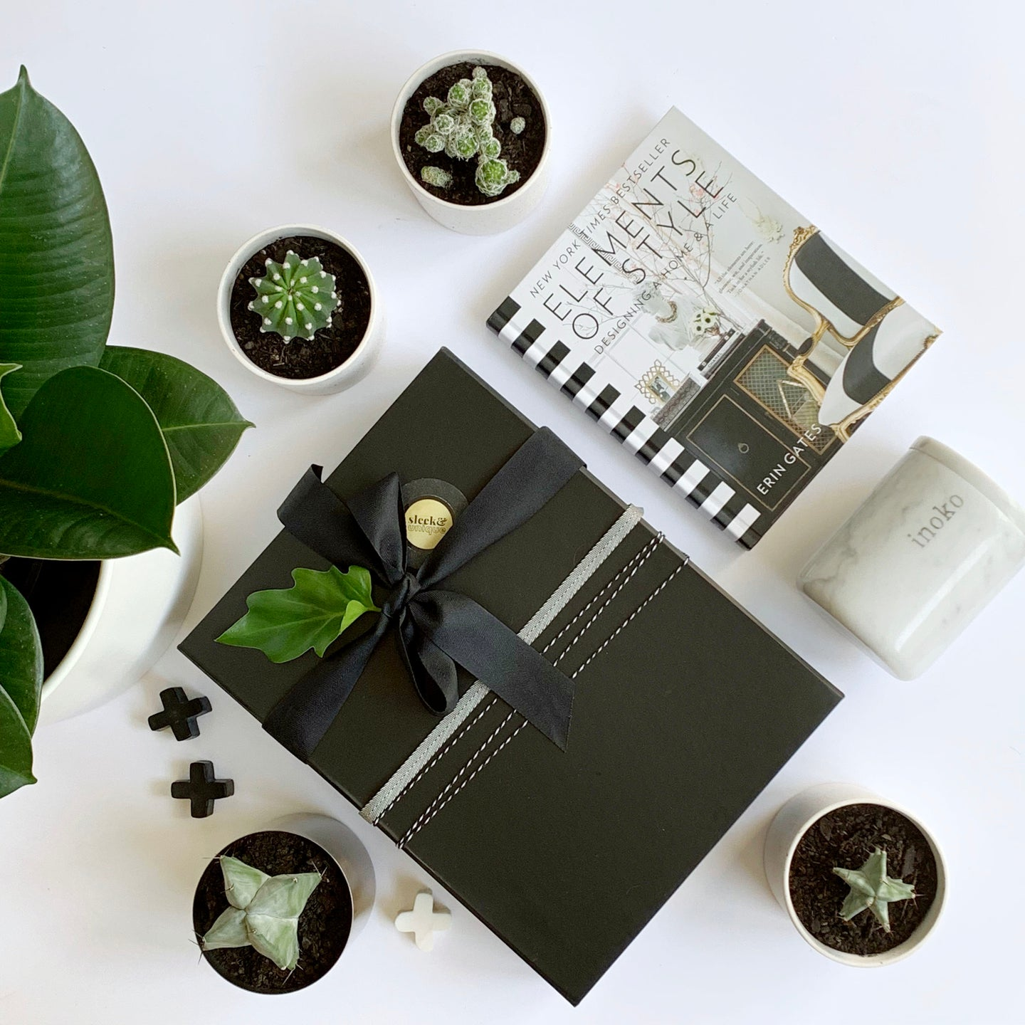 Gift Delivery Adelaide and Indoor Plant Gifts Delivered