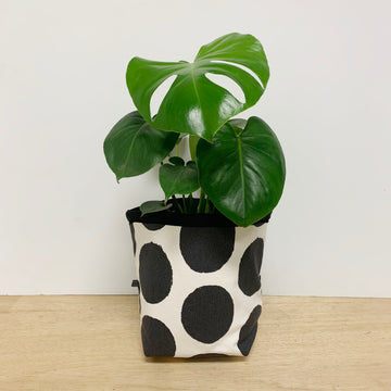 Love Friday Plant Pot Cover - Adelaide Gift Delivery