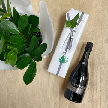 ZZ Plant - Zamioculcas Zamiifolia) and Hentley Farm Blanc De Noir Sparkling Gift - Wine Gift Delivery Adelaide
