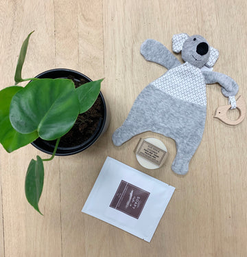 Baby Cuddly Koala Comforter - Gift Basket Delivery Adelaide