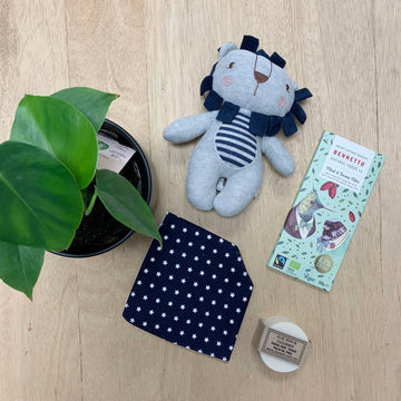 Baby Boy Lion Gift Box - Gift Delivery Adelaide