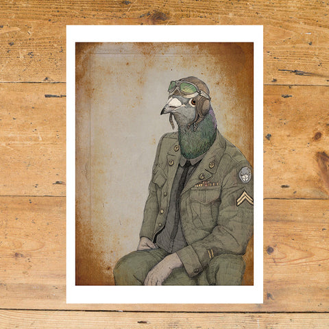 Ben Rothery Unframed Print - Pigeon