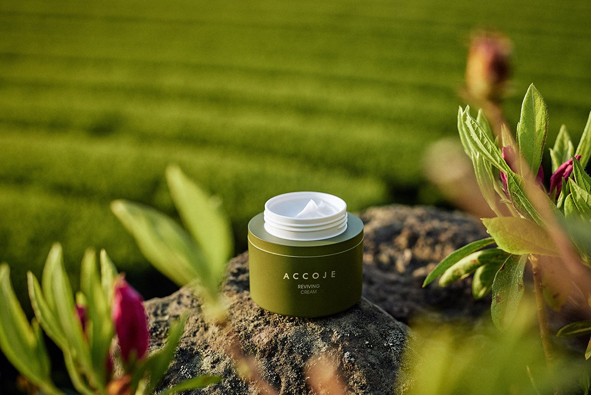 Accoje Reviving Cream 50ml - Glam Touch UK