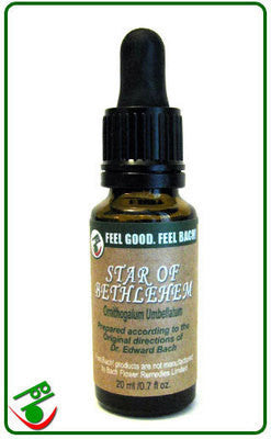 Star Of Bethlehem Bach Flower Remedy (Bach)