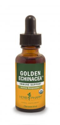 Golden Echinacea (Herb Pharm)