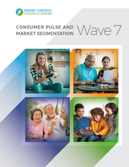 Consumer Pulse and Market Segmentation – Wave 7