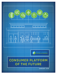 Consumer Platform of the Future