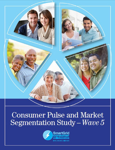Wave 5 Consumer Pulse and Market Segmentation Study
