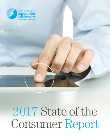 2017 State of Consumer Report