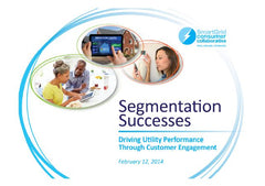 Segmentation Successes Report