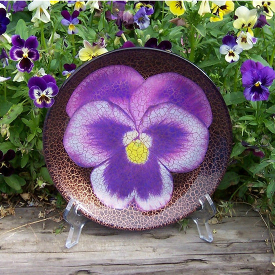 Purple Pansy Limited Edition Collector Plate