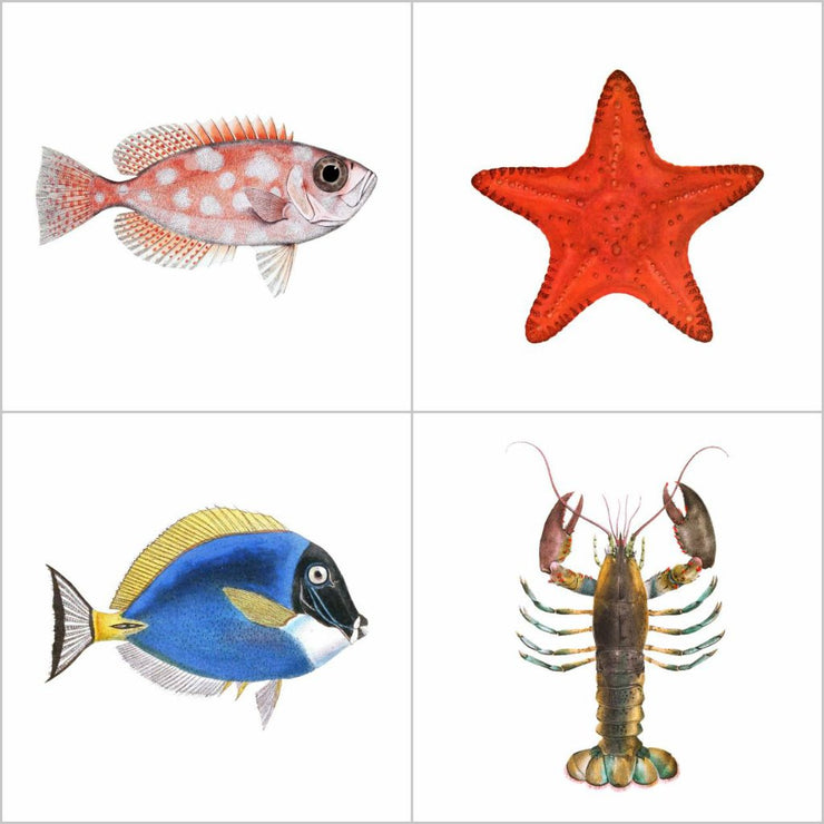 Pack Stickers de 36 Illustrations Vintage Poissons et Vie Marine
