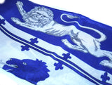 Your Lion Eyes Scarf - Blue