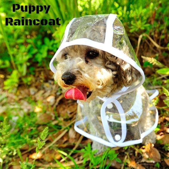 (70% Off  Only Today) Puppy Raincoat!!