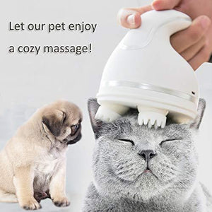 Pet electric massager