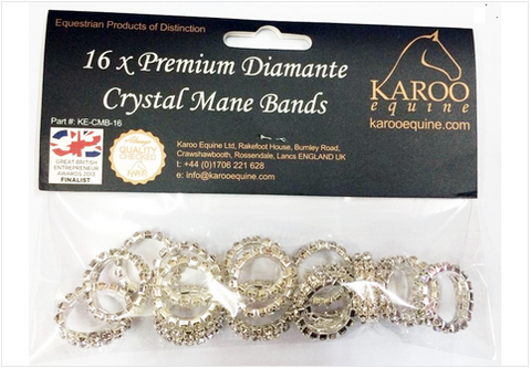 Diamante Crystal Mane Plaiting bands Elastic 16 Pieces - Twin Row Crystals