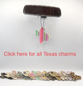 Texas Car Charm & Scented Oil (Combo Pack)