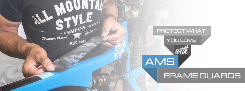 AMS Frame and Fork Guards