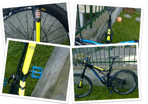 Collage of Santa Cruz Bronson with AMS Frame Guards