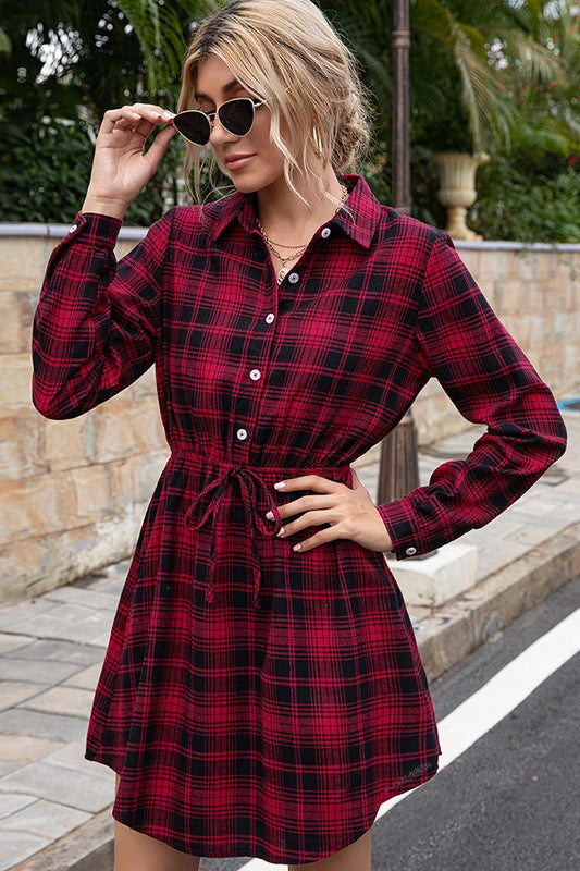 Perfect in Plaid Dress