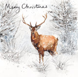 Woodland deer Christmas cards