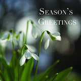 MKMRF Snowdrops Christmas cards