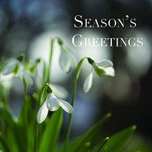 Snowdrops Christmas cards