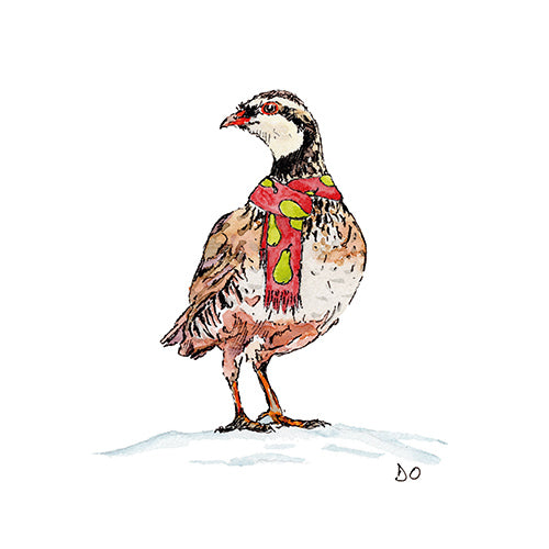 Partridge in a pear scarf Christmas cards