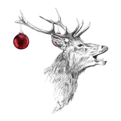 deerings christmas cards - Animal Charity Christmas Cards
