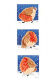 Robin trio Christmas cards