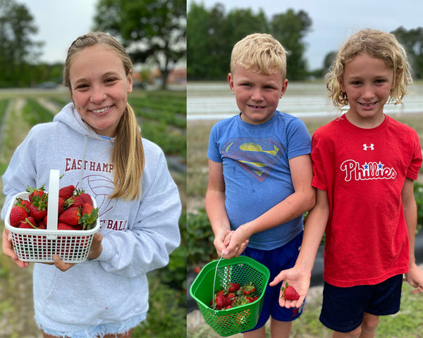 kids strawberry picking