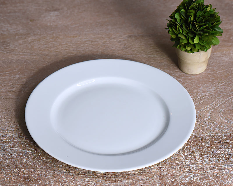 White French salad plate from Pillivuyt next to small plant