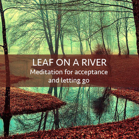 Leaf On A River Meditation Download - FREE!