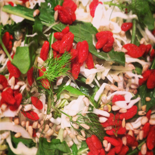 Rocket, Fennel and Goji Berry Salad with Lemon Fennel Cashew Dressing