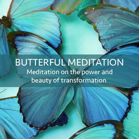 Butterfly Meditation Download (LEVEL 1)